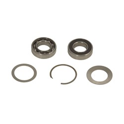 ROS Spindle Bearing Kit MPA0804, 1/Pkg