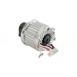 Motor 5,0mm/30g Pad for DEROS 350X 110V